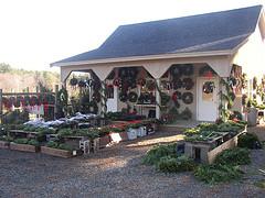 Greenwood Christmas Tree Farm Gift Shop